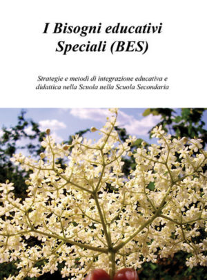 I Bisogni educativi Speciali (BES)