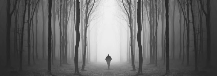 atmosfera tetra uomo che cammina in un sentiero in mezzo agli alberi e nebbia